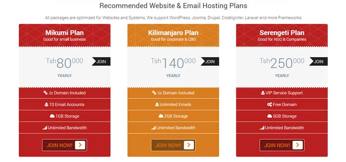 Cheap Website Design and Hosting Tanzania